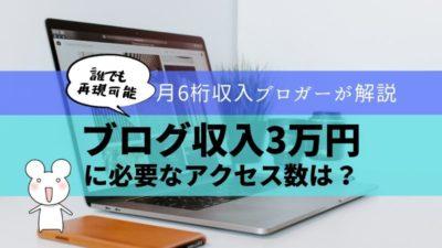 ブログのアクセス3万PVでの収入目安は3万円!月12万円稼ぐブロガーが解説